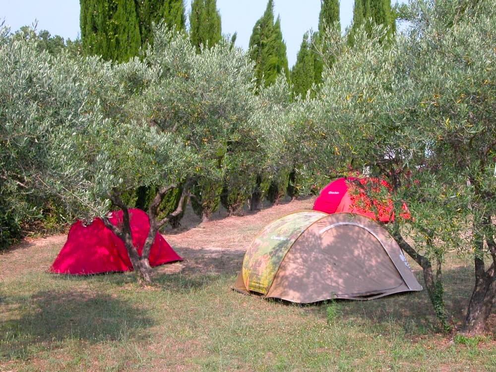 emplacement de camping dans le gard